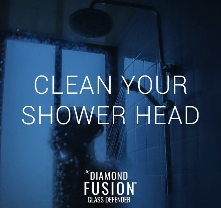 Why you should clean your shower head
